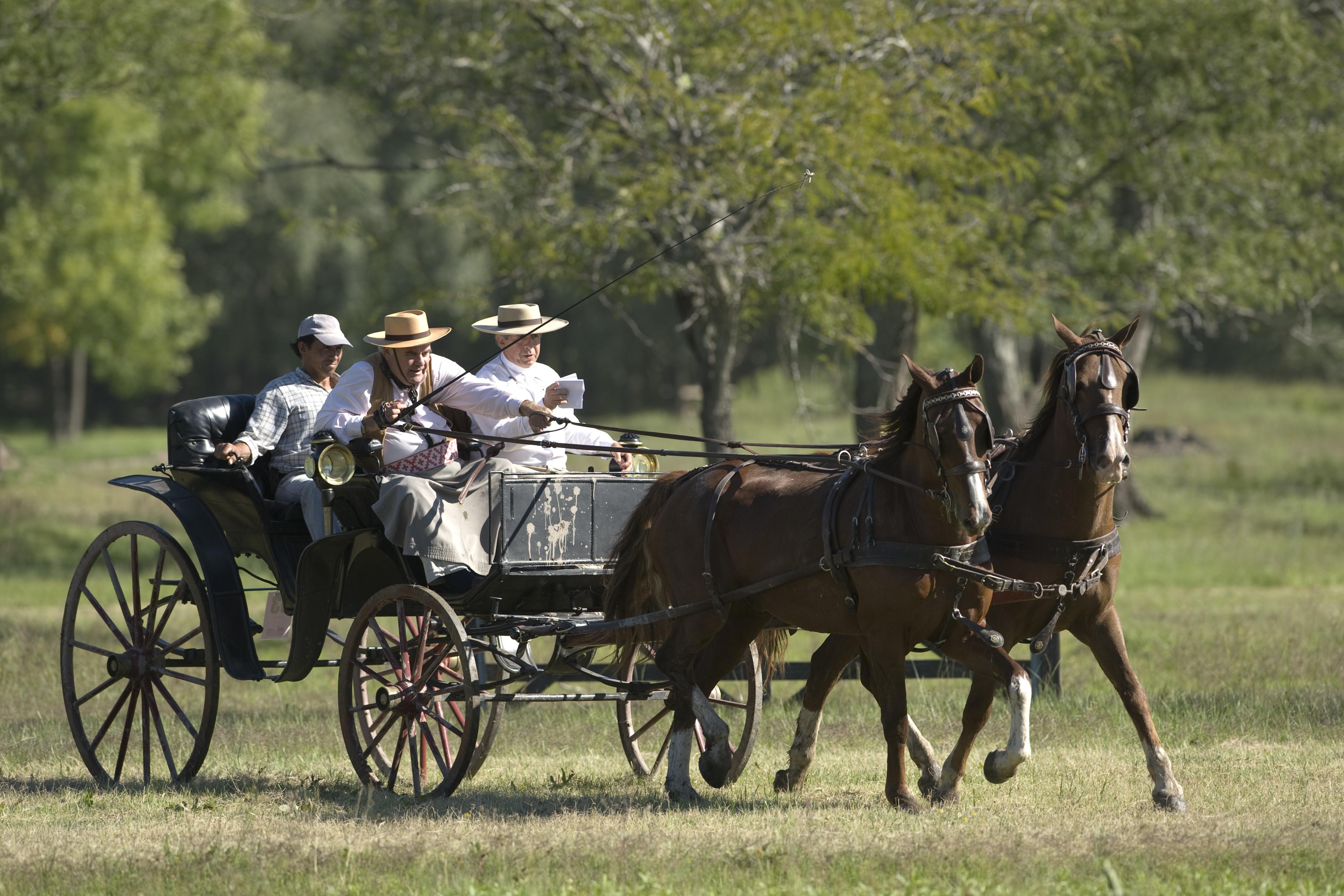 El próximo fin de semana largo, San Antonio de Areco será sede de una nueva edición de la Atada Campo Afuera, la tradicional muestra y desfile de carruajes de campo.
