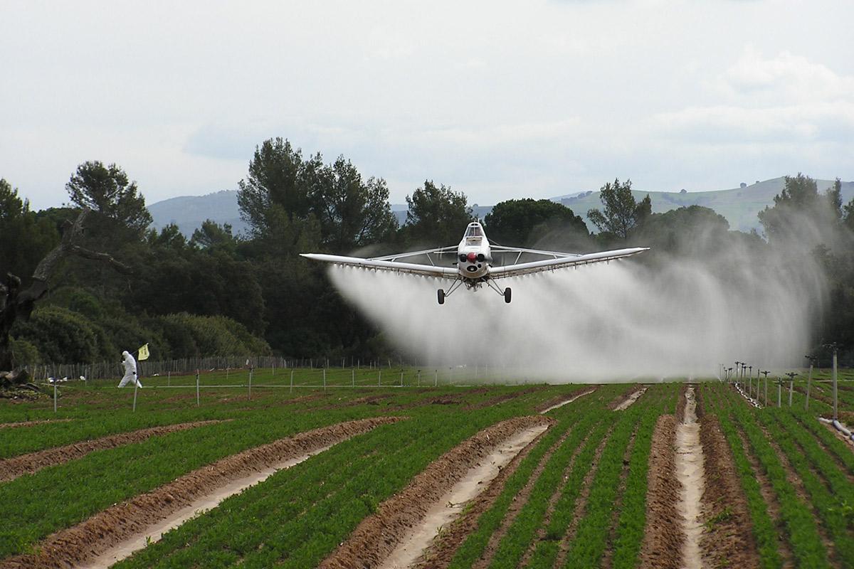 Mientras en Estados Unidos la Justicia de California condenó en un fallo ejemplar a Monsanto a pagar 289 millones de dólares a un hombre con cáncer terminal producto de su exposición a pesticidas, en San Antonio de Areco la fumigación aérea lleva más de un año prohibida totalmente.