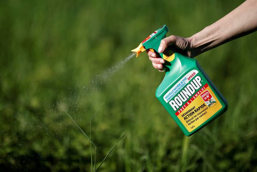 En el marco del juicio iniciado tras una demanda por los efectos letales de la exposición al herbicida Roundup, la empresa alemana Bayer -que recientemente adquirió Monsanto Co, creadora del producto en los años ´70- logró mediante un fallo la reducción del veredicto del jurado de 80,3 millones de dólares a 25,3 millones de dólares.