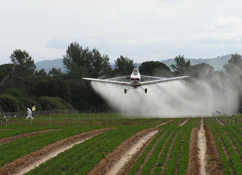 En San Antonio de Areco la fumigación aérea lleva más de un año prohibida totalmente.
