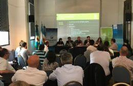 """Durañona participó del panel """"Experiencias de implementación de Sistemas de Declaraciones Juradas Patrimoniales""""."""